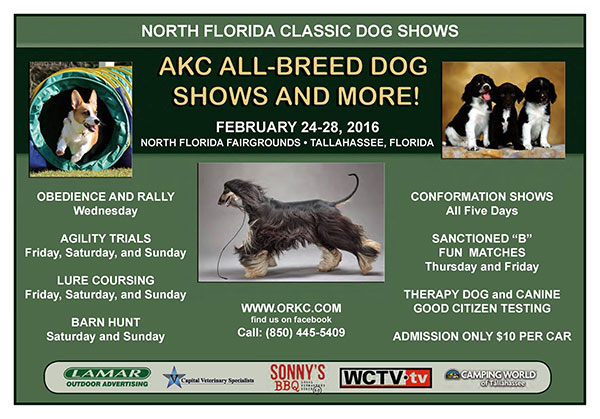 Orkc Dog Show Tallahassee